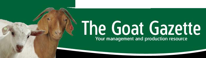 Goat Gazette w white copy